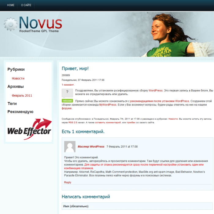 Профессиональная WordPress тема Novus