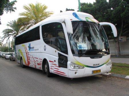 DLE в сфере пассажирских перевозок