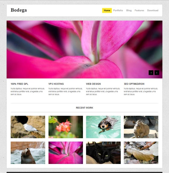 Тема Bodega для Wordpress